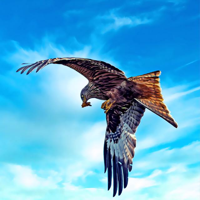 """Red Kite Swoop Digital Art"" stock image"
