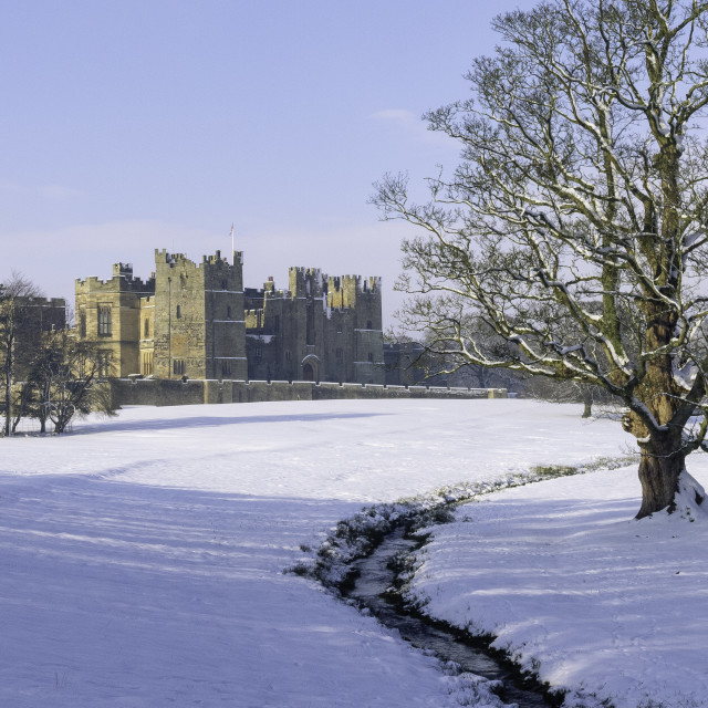 """""""Raby Castle, County Durham"""" stock image"""