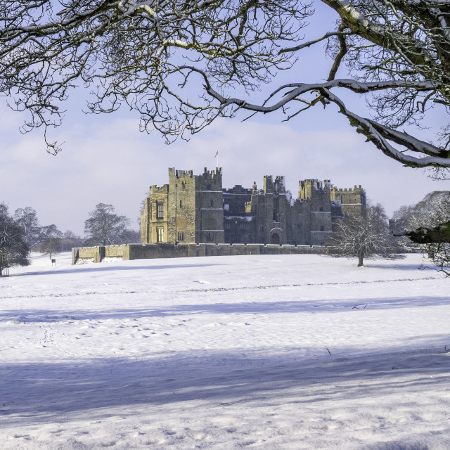 """""""Raby Castle, Teesdale"""" stock image"""