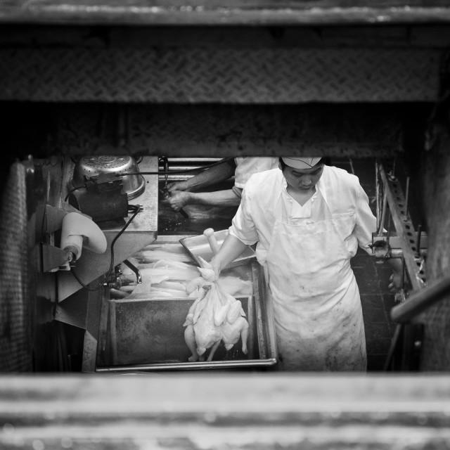 """""""Preparing Ducks - Chinatown, New York"""" stock image"""