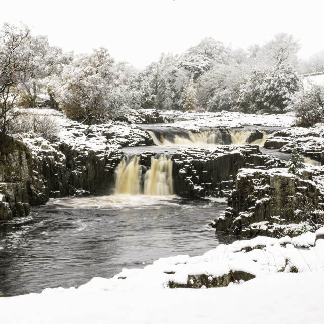 """""""Heavy snowfall at Low Force"""" stock image"""