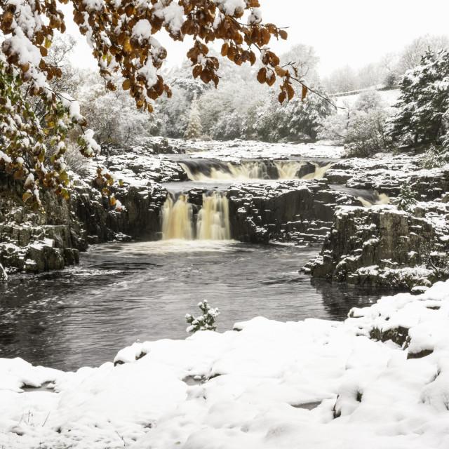 """Low Force waterfalls"" stock image"