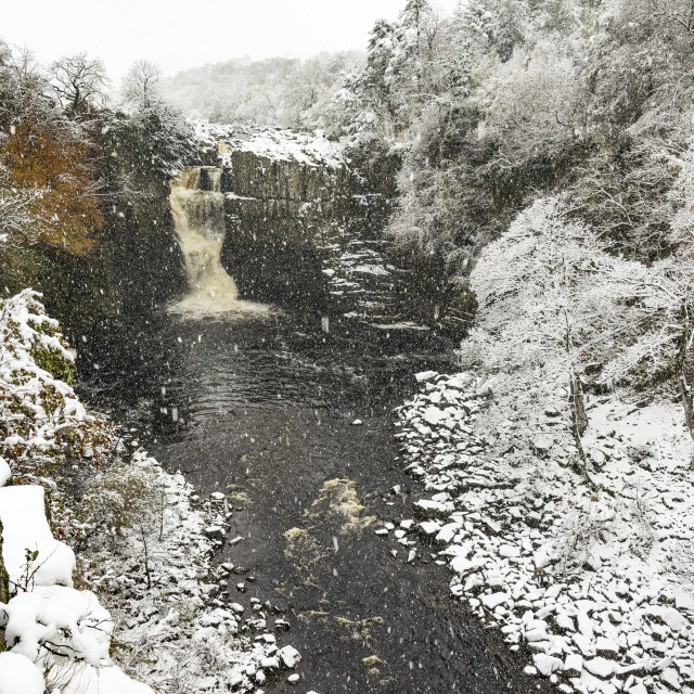"""""""High Force waterfall in the snow"""" stock image"""