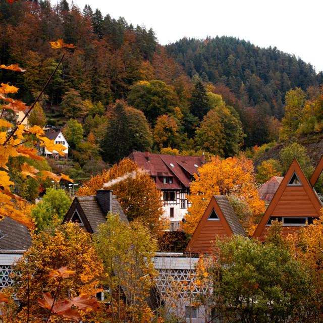 """Autumn in Triberg"" stock image"