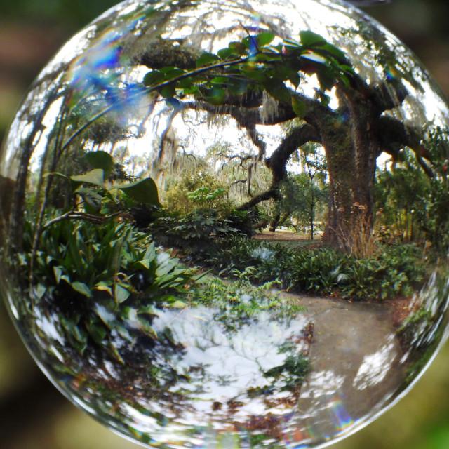 """Magical Garden in Globe"" stock image"