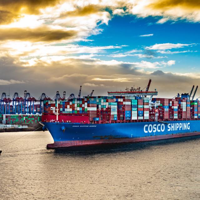 """Containerschiff Cosco Shipping Scorpio auf der Elbe"" stock image"