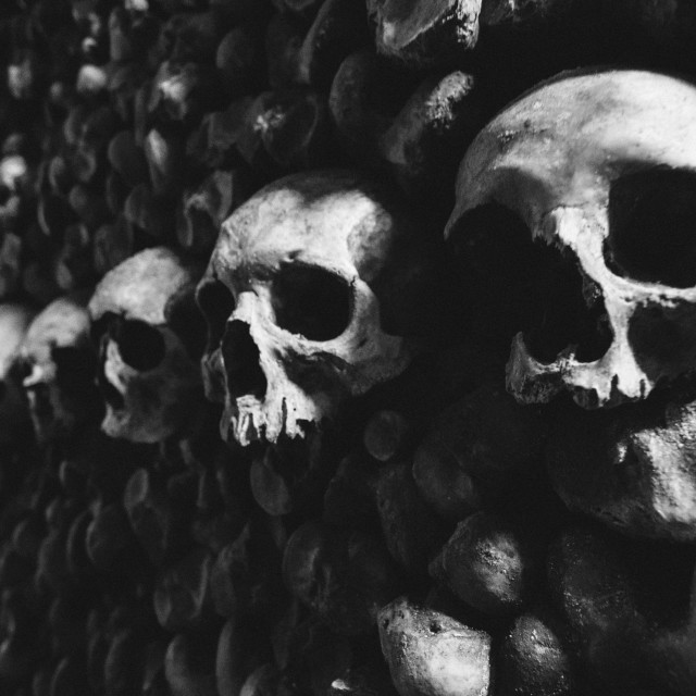 """""""Human Skulls stacked in Catacomb"""" stock image"""