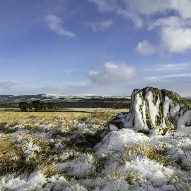 """""""Butterstone Cotherstone Moor"""" stock image"""