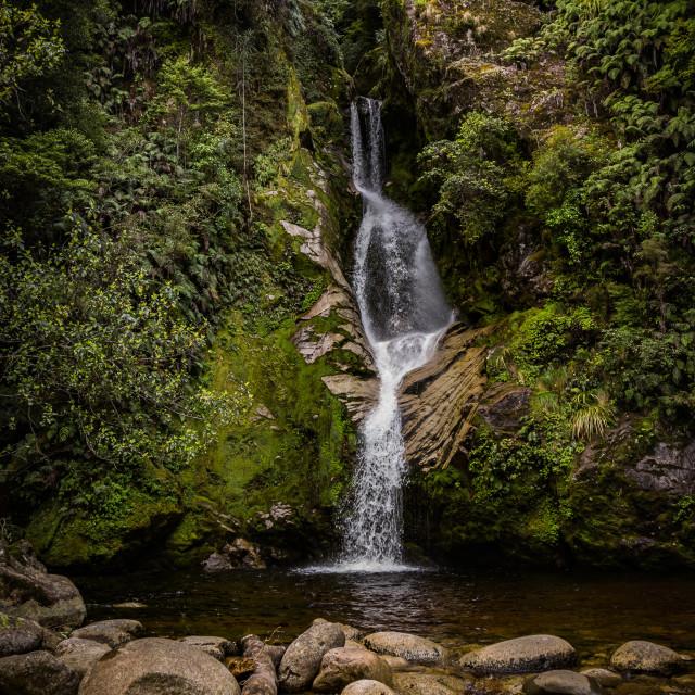"""Dorothy Falls, Lake Kaniere Scenic reserve West Coast, New Zealand"" stock image"
