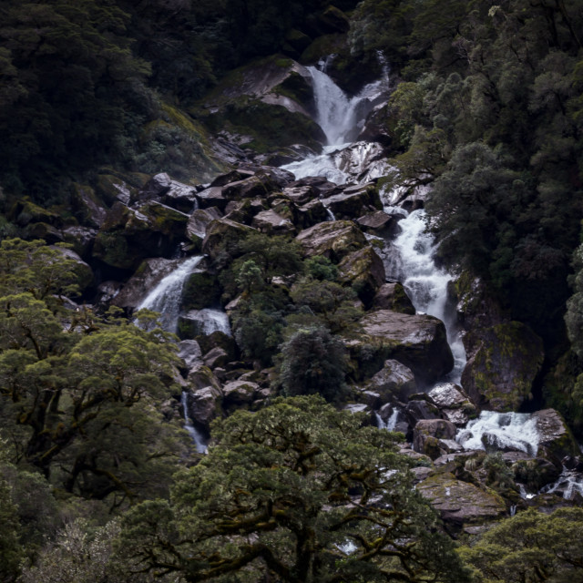"""Roaring Billy Falls, Mount Aspiring National Park, New Zealand"" stock image"
