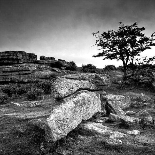 """""""Dark Dartmoor"""" stock image"""