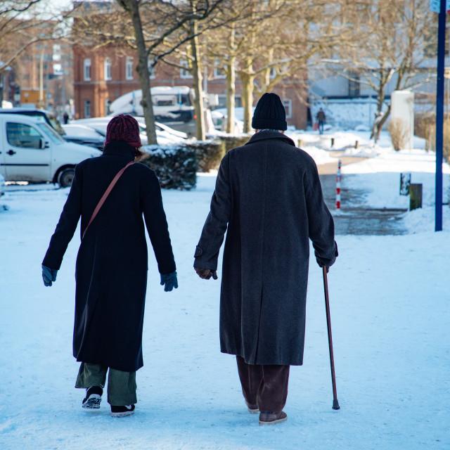 """""""Rentner beim Spaziergang im Schnee"""" stock image"""