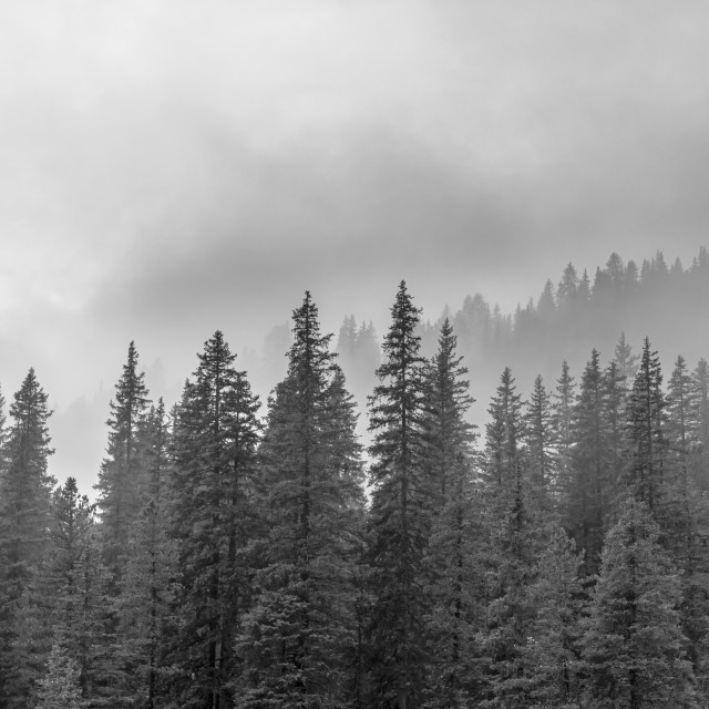 """Cloudy Dolomites"" stock image"