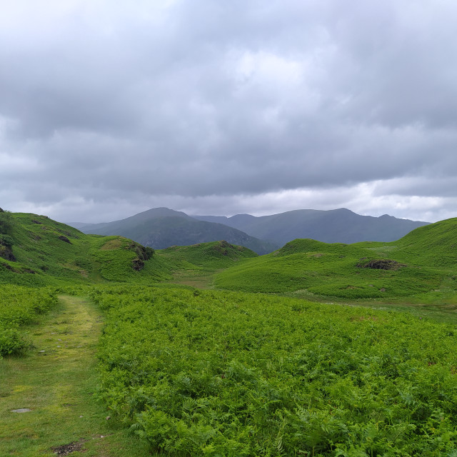 """""""Fairfield from Loughrigg"""" stock image"""