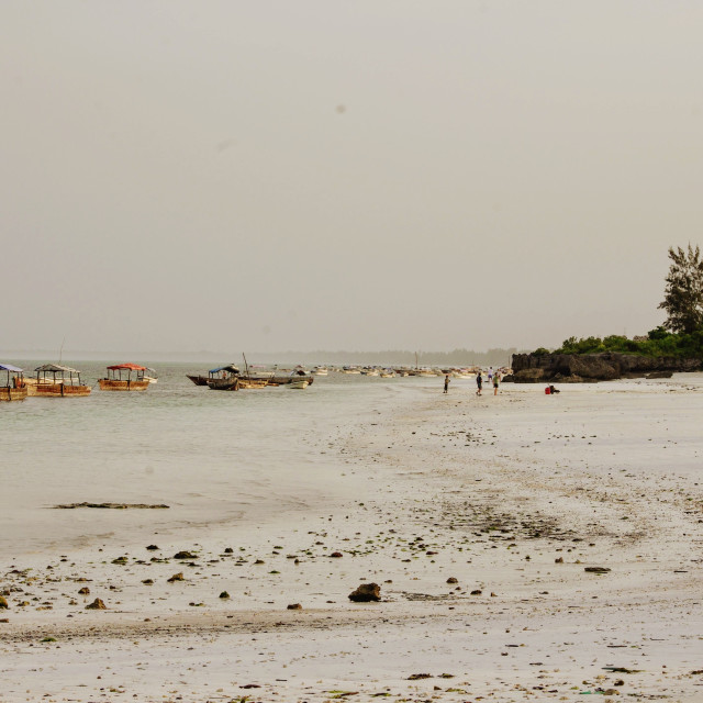 """""""Zanzibar Sundowners"""" stock image"""