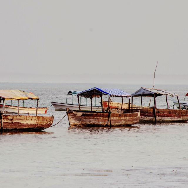 """Zanzibar Boats"" stock image"