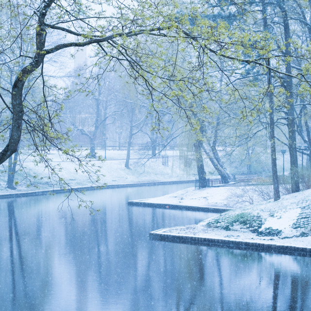 """Canal in Riga, Latvia"" stock image"