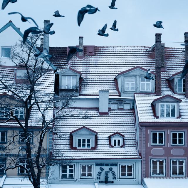 """Historic Riga Old Town in winter - Latvia"" stock image"