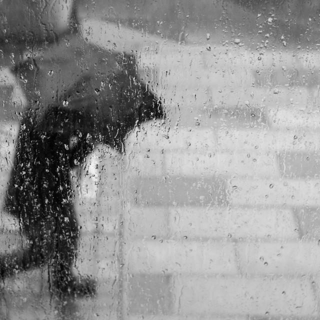"""Rain Man"" stock image"