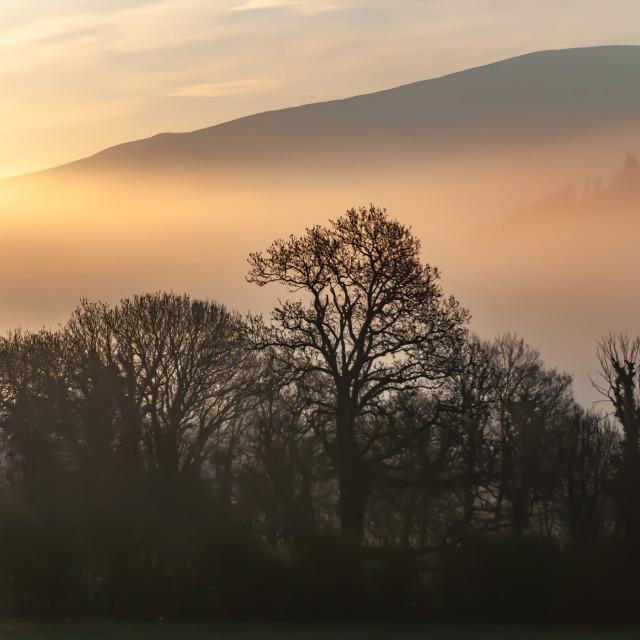 """""""Sunrise at Embleton"""" stock image"""