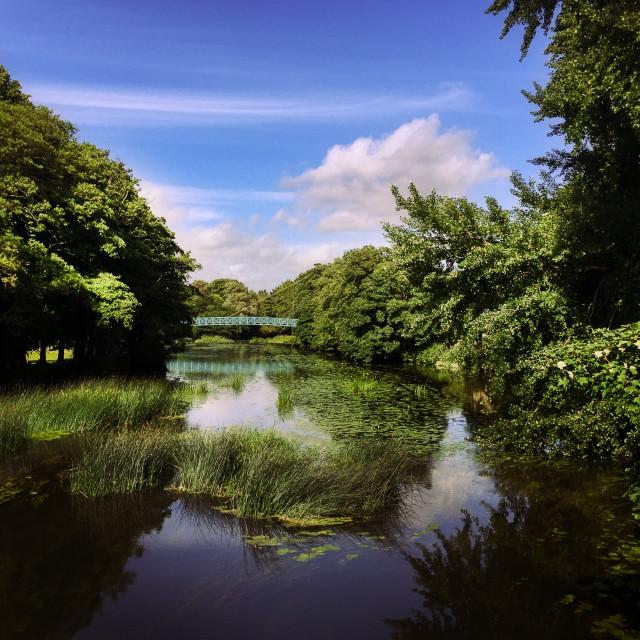 """The Blue Bridge, Blandford"" stock image"