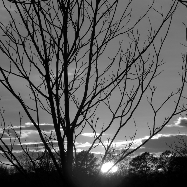"""Black and White Sunset"" stock image"