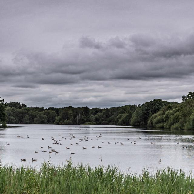 """My Manchester - Chorlton Water Park"" stock image"