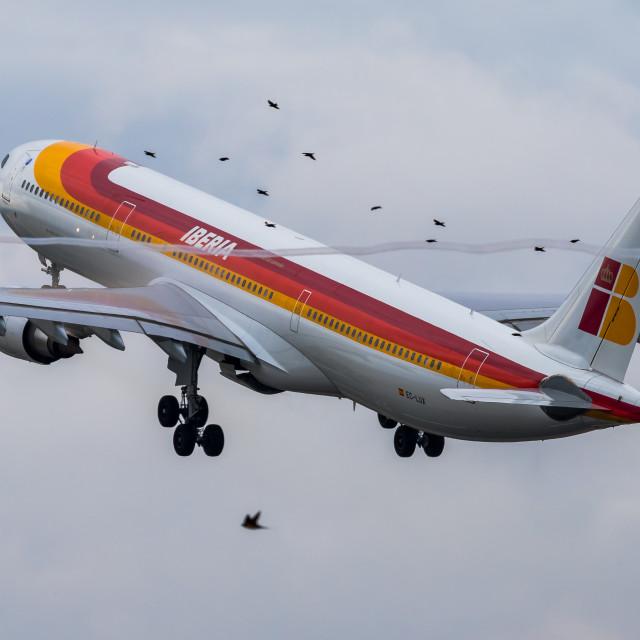 """Airbus A330 Iberia Panamá EC-LUX departing Madrid."" stock image"