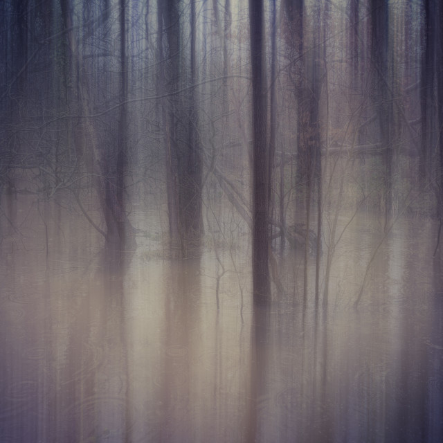 """Flood"" stock image"
