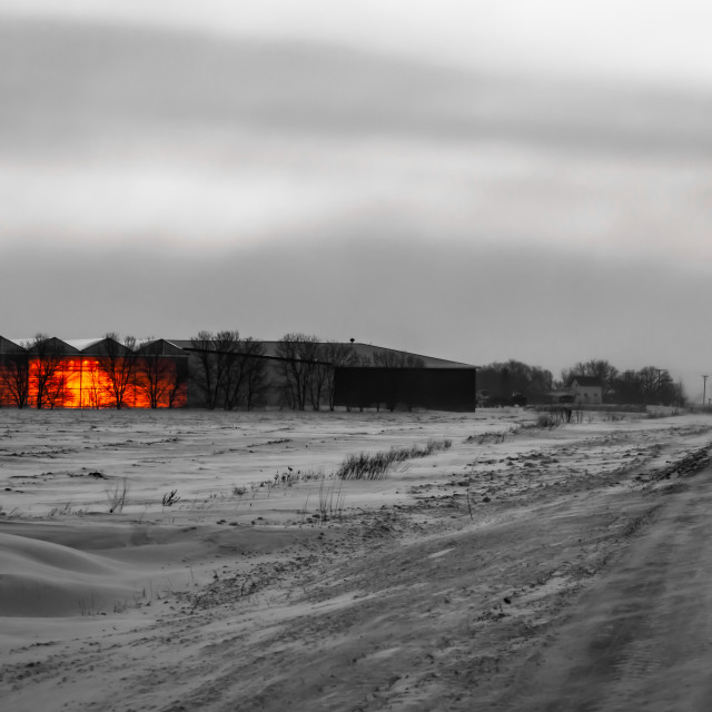 """Greenhouse at dawn"" stock image"