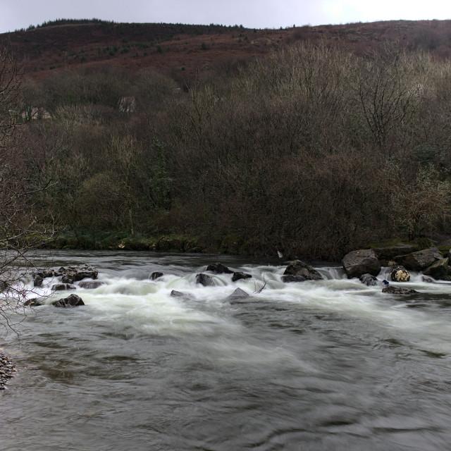"""""""River Afan near Ynys y Wern"""" stock image"""