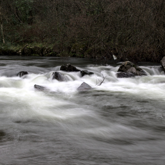 """River Afan near Ynys y Wern - close up"" stock image"