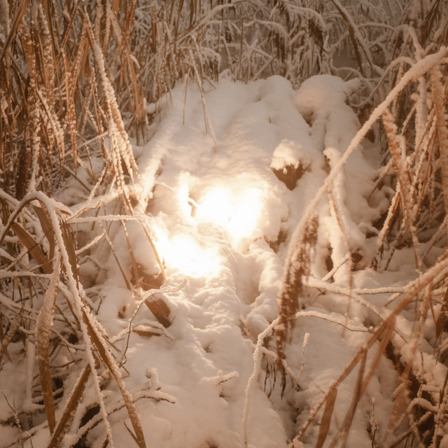"""""""Fire And Snow II"""" stock image"""