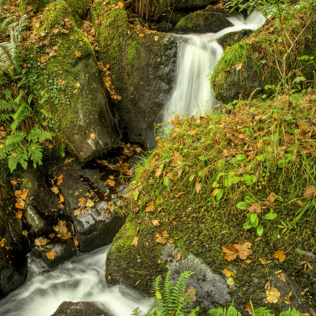 """""""The Colly Brook"""" stock image"""