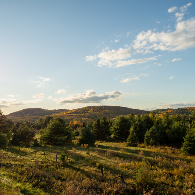 """""""Wilno Lookout"""" stock image"""
