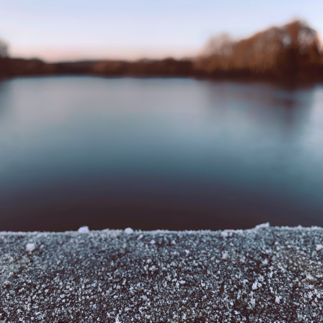 """""""A Frosty View"""" stock image"""