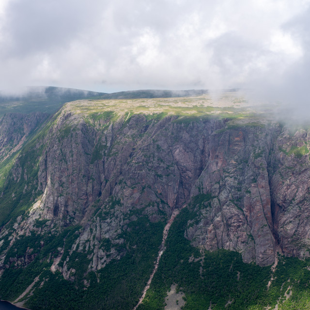 """""""Top of Gros Morne"""" stock image"""