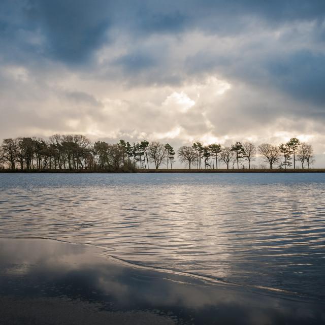 """""""Monikie Park lake, Angus"""" stock image"""