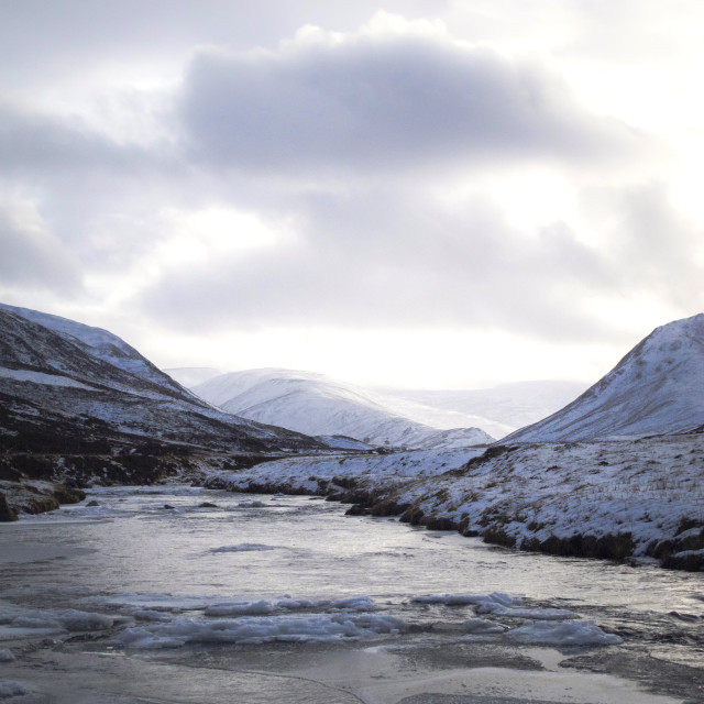 """""""Cairngorms National Park in winter"""" stock image"""