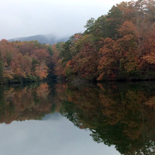 """Autumn Landscape near Lake"" stock image"