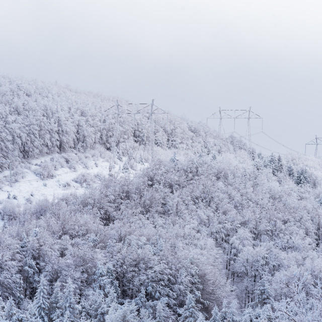 """""""High voltage power lines in the winter."""" stock image"""
