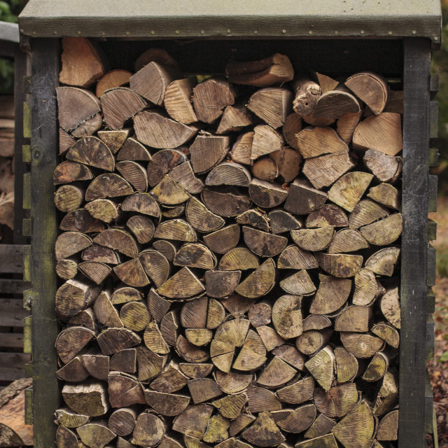 """Log pile Ickworth"" stock image"