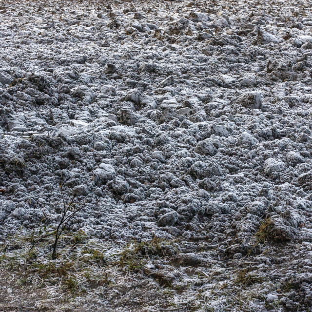 """""""Frost on ploughed field"""" stock image"""