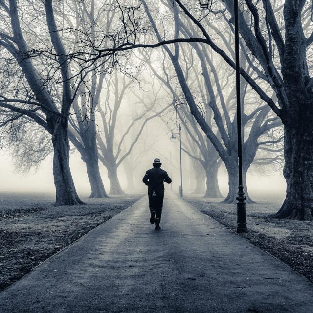 """An early morning run on a foggy Jesus Green, Cambridge UK."" stock image"