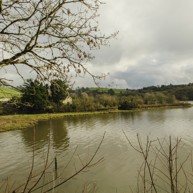"""""""River Tavy, Devon"""" stock image"""