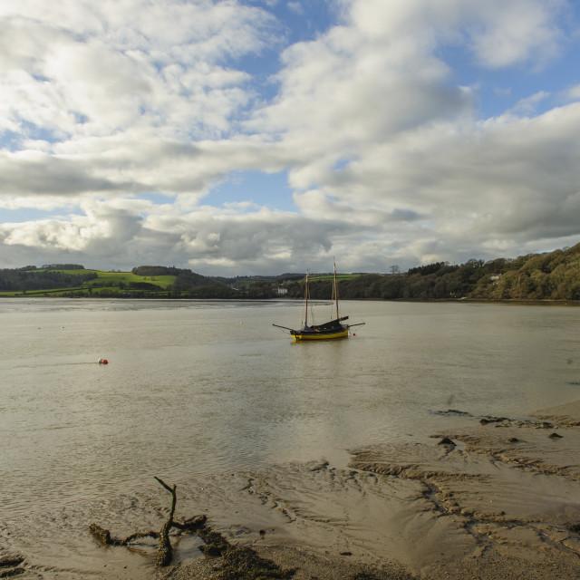 """""""River Tamar, Devon"""" stock image"""