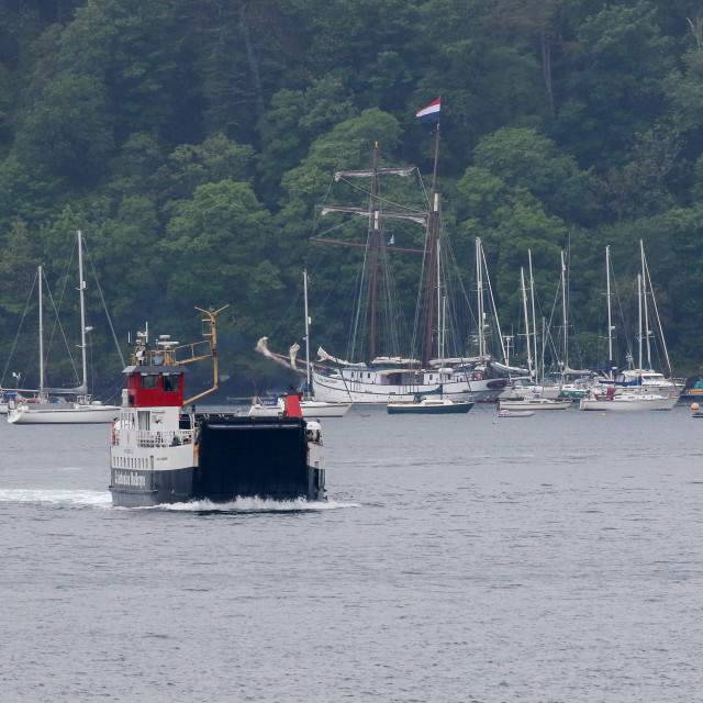 """Ferry, Tobermory"" stock image"