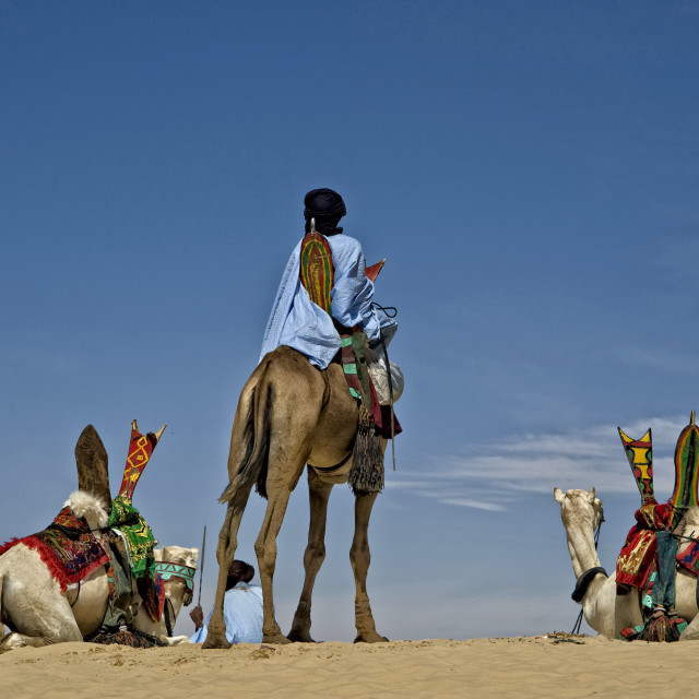 """Touaregs and camels; Sahara Desert, Mali"" stock image"