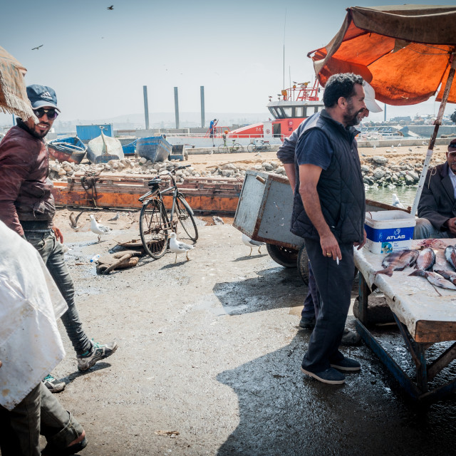 """Fishermen in Essaouira"" stock image"