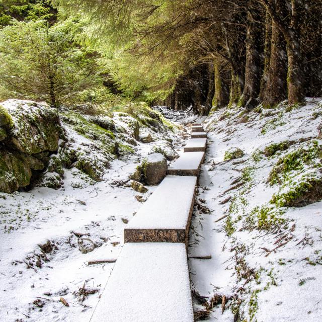 """Snow in Ballinastoe"" stock image"